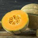 UNA SELLER 25 of Honey Rock Melon Seeds, Cantaloupe, Sugar Rock, NON-GMO