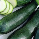 UNA SELLER BLACK BEAUTY 20 SEEDS SQUASH ZUCCHINI CUCURBITA PEPO NON-GMO Open-Pollinated