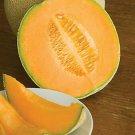 UNA SELLER Hales Best Jumbo Cantaloupe *Heirloom* (50 Seed's)