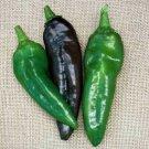 UNA SELLER Anaheim Pepper *Heirloom* (50 Seed's)