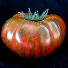 UNA SELLER Chocolate Stripe Tomato *Heirloom* (50 Seed's)