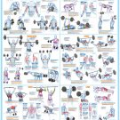 Bodybuilding and Weight Training Chart - A1 Size Laminated