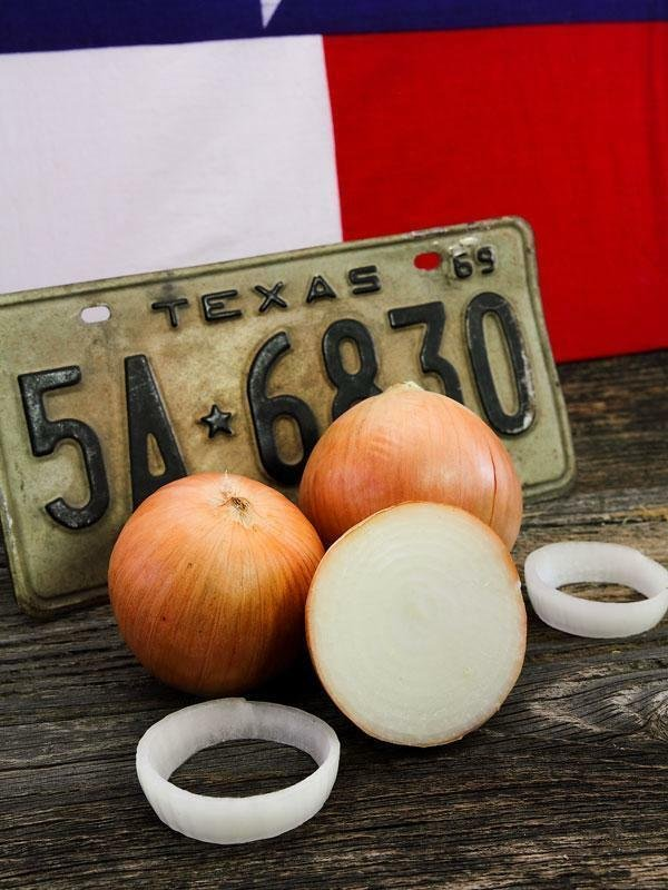 600 Seeds USA TEXAS GRANO 1015Y ONION Seeds Organic Non-Gmo Sweet Short Day Spring/Fall