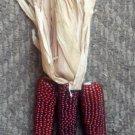 USA Product20 MINI 'BURNT ORANGE' CORN Miniature Dark Ornamental Zea Mays Vegetable Seeds