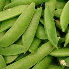 USA Product50 MAMMOTH MELTING SUGAR PEA Stringless Snow Pea Pisum Sativum Vegetable Seeds
