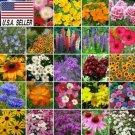 Kolokolo Store NORTHEAST WILDFLOWER  300 SEEDS  MIX 25 Species of Wildflower Seeds USA