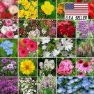 Kolokolo Store 500 Seeds SEEDS PARTIAL SHADE WILDFLOWER SEED MIX 22 Species of Wildflower Seeds