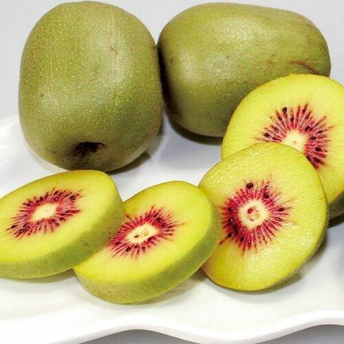 Kolokolo Store Red Crimson Kiwi Kiwifruit Chinese Gooseberry Actinidia Fruit Seeds 40 PCS RARE