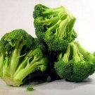 Kolokolo Store Broccoli Early Fall Rapini 100 seeds BOGO 50% off SALE