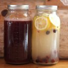 LACTO-FERMENTED CULTURES FOR HERBAL,TEA OR JUICE ( FIZZY SODA) DRINKS-HOME USE!