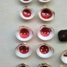 Memory game of 10, hand-painted shells, Venus Verrucosa and Parvicardium Scriptum (018)