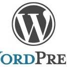WordPress Package Premium Themes