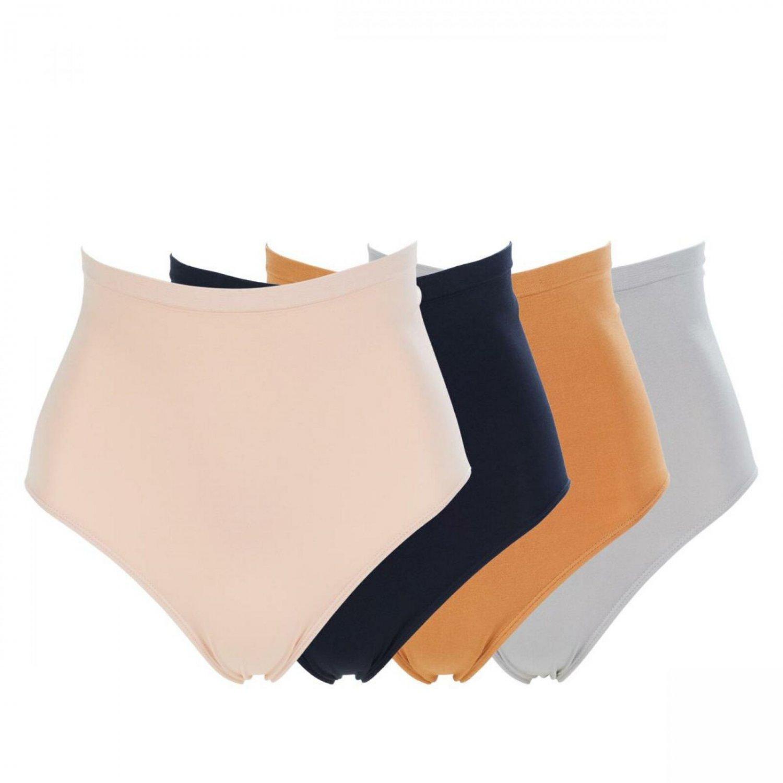 Rhonda Shear 4-pack Seamless High-Waist Panty 625448
