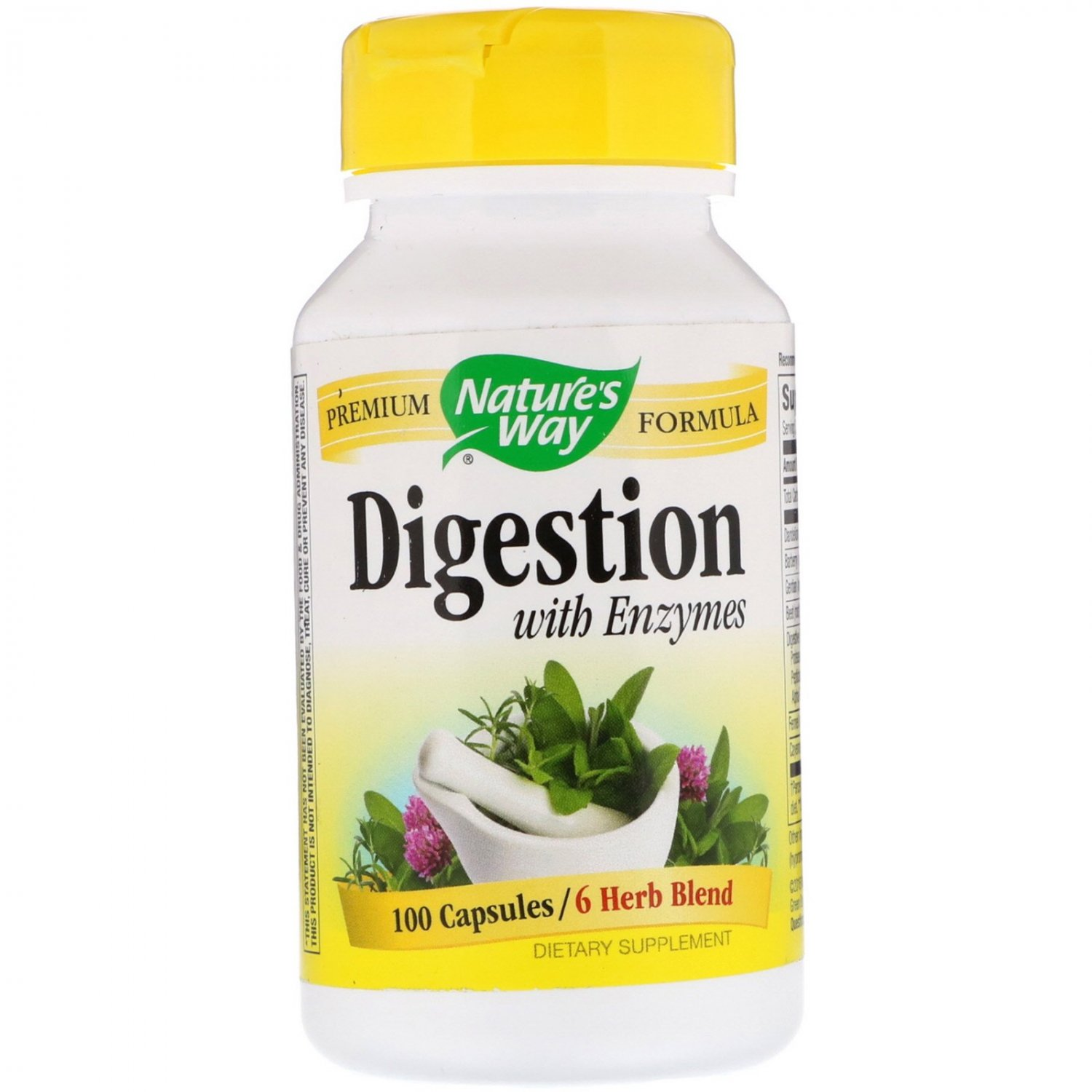 Nature's Way, Digestion, with Enzymes, 100 Capsules