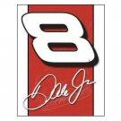 DALE EARNHARDT JR #8 TIN SIGN NASCAR COLLECTOR SIGNS E