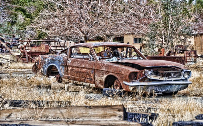 MUSTANG RUSTED PONY PETER TORRES HEAVY METAL SIGN