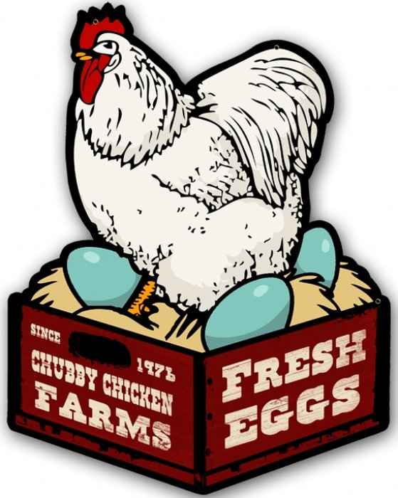 Chicken Fresh Eggs Custom Metal Shape