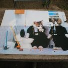 CATS SMOKING HEAVY PAPER PICTURE PRINT