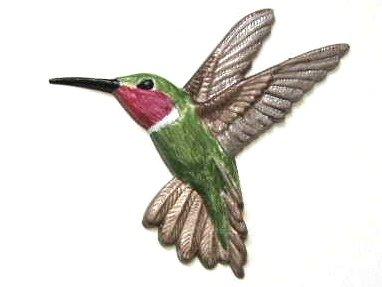 Hummingbird   Refrigerator Magnet   Handpainted Magnets   Bird Magnets