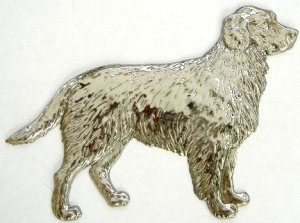 Dog Retriever | Refrigerator Magnet | Handpainted Magnets | Animal Magnets