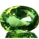 #4302 Apatite Fine Neon Green Natural 22.29 cts