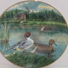 Pintail Living Nature Jerners Ducks Lake Collector Plate Vintage1986