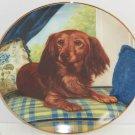 Dachshund Collector Plate Wiener Dog Window Seat Christopher Nick Danbury Mint