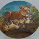 Lion Cubs Baby Collector Plate Watchful Eye Wildlife Hicks Knowles Vintage 1981