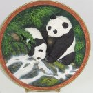 Panda Bear Collector Plate 3D Taste Life Vintage Bradford Exchange Will Nelson