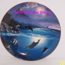 Dolphin Kisses Collectors Plate Bradford Exchange Ocean Sealife