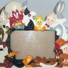 Lonney Tunes Photo Frame Picture Bugs Bunny Tweety Taz Daffy Duck Warner Bros