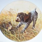 German Shorthaired Pointer Collector Plate 1988 Frizt's Folly Kennel Club COA