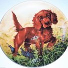 Irish Setter Collector Plate 1988 Missing the Point United Kennel Club COA