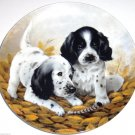 English Setters Collector Plate 1989 Fine Feathered Friends Kennel Club COA