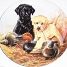 Labrador Retrievers Collector Plate 1988 A Perfect Set United Kennel Club COA