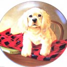 Cocker Spaniel Collector Plate 1988 Shirt Tails United Kennel Club COA