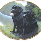 Black Labrador Lab Retriever Collector Plate Sporting Companions Franklin Mint