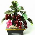 Grape Jade Tree