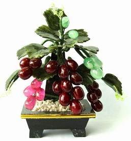 Grape Jade Tree