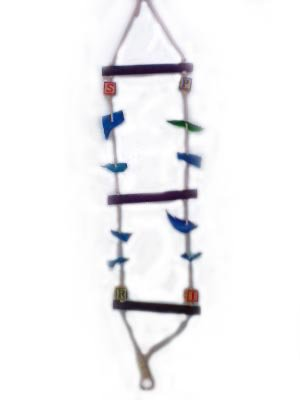 Tropical Parrot Ladder