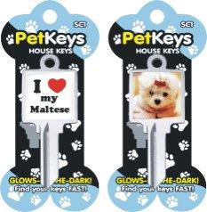 Klinky Maltese pet dog key blank 816