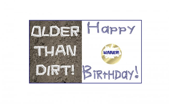 12 OLDER THAN DIRT Birthday Favors Scratch Off Game Tickets PERSONALIZED