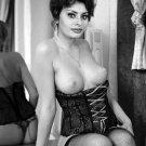 Sophia Loren Photo Sex Symbol Actress