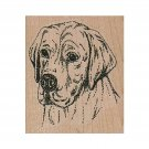 Mounted Rubber Stamp, Labrador Retriever Stamp, Lab Stamp, Retriever Stamp, Dogs