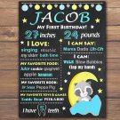 raccoon 1st birthday poster,raccoon birthday poster,woodland birthday poster