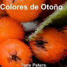 Colours of Fall Children's Spanish-English Picture Book