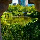 City Pond 1 Digital Art Image Photograph