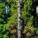Totem Pole Digital Art Image Photograph