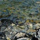 Rocky Ocean Shores Digital Art Image Photograph