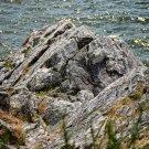 Cliff Side View Digital Art Image Photograph